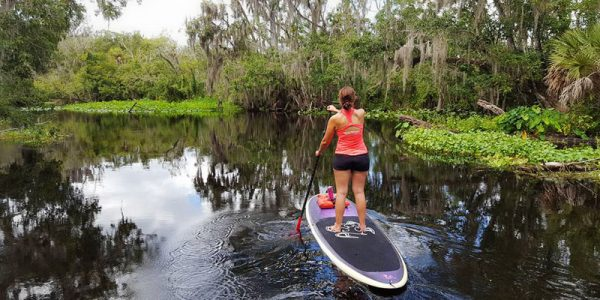 800x400-paddleboarding3